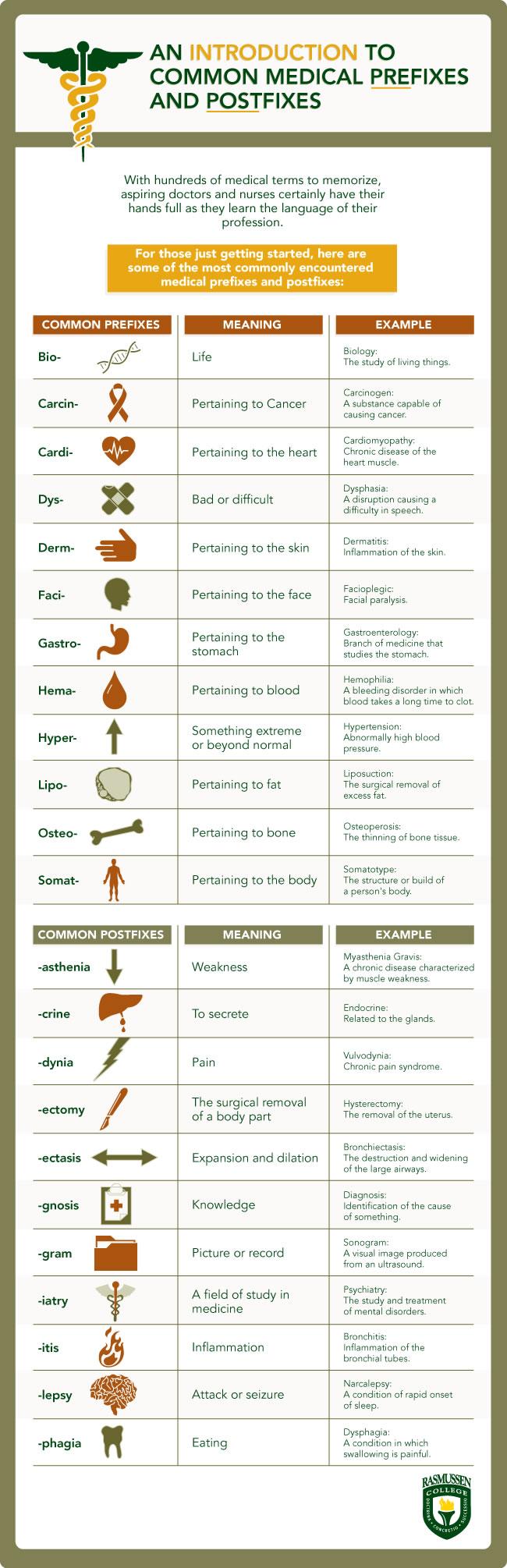 Common Medical Prefixes and Postfixes
