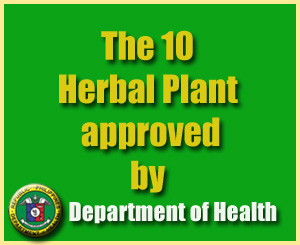 Philippines Herbal Medicine plants approved by DOH Philippines Herbal Medicine plants approved by DOH