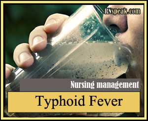 Typhoid Fever Typhoid Fever Nursing Management