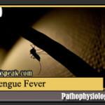 Dengue (Dengue Hemorrhagic Fever) Pathophysiology & Schematic Diagram