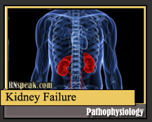 Kidney Failure Pathophysiology & Schematic Diagram