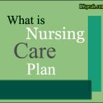 What is (NCP) Nursing Care Plan?