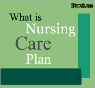 What is (NCP) Nursing Care Plan?