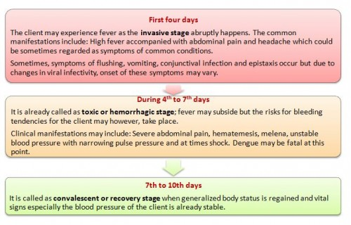 Stages of Dengue Fever