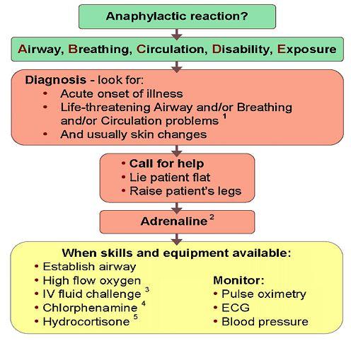 Anaphylactic Shock algorithm