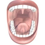 mouth and teeth 150x150 Prometric Practice Exam for Nurses Test 1