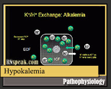 Hypokalemia Pathophysiology and Schematic Diagram
