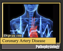 Coronary Artery Disease Pathophysiology