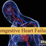 Congestive Heart Failure Pathophysiology and Schematic Diagram