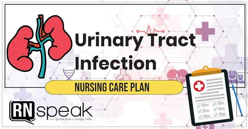 urinary tract infection nursing care plan
